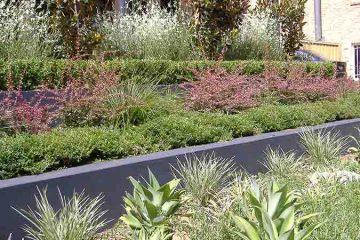 Soft Landscaping